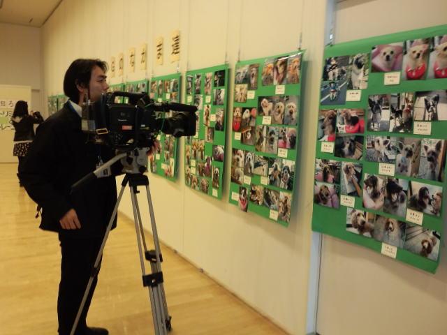 チャリティー写真展開催中